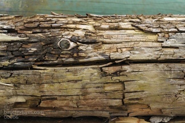 wood-fencepost-wethered-old-00066